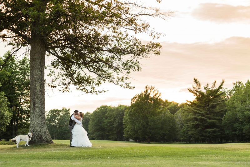 bride and groom kiss after wedding on Michigan golf course along with their dog