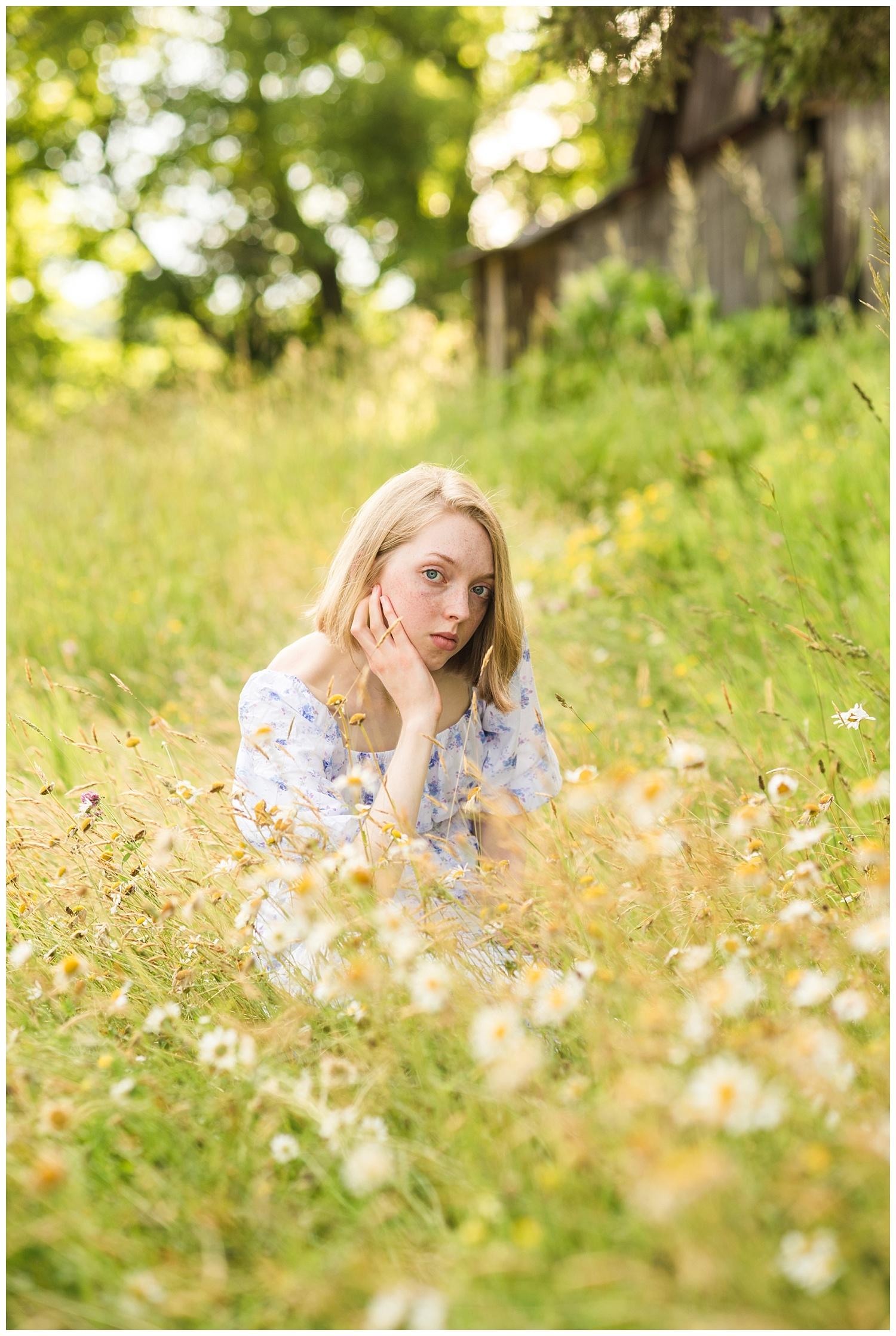 field of daisies for senior pictures in chassell mi